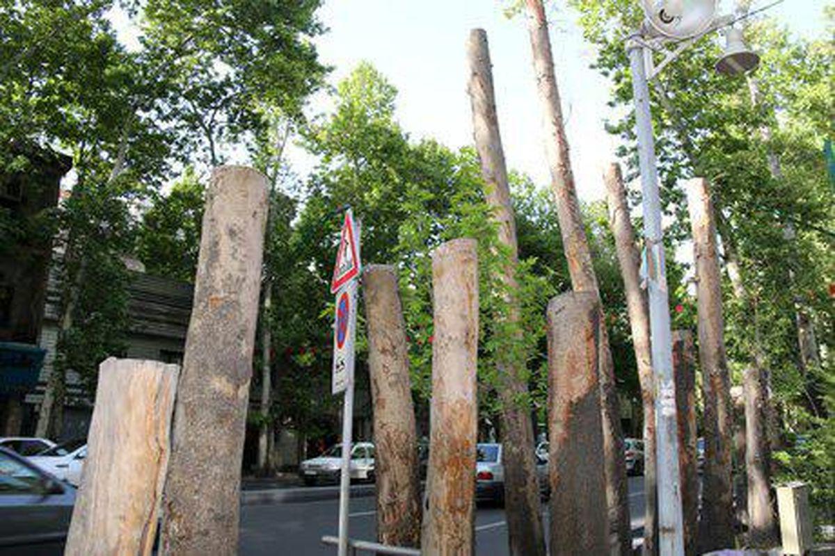 توضیحات سازمان بوستانها درباره قطع درختان خیابان ولیعصر