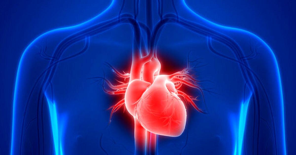قلب سالمتر علامت مغز سالم تر در دوره سالمندی