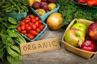 اولویت صدور مجوز برای محصولات ارگانیک