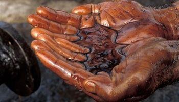 نشت ۱۵ساله نفت آمریکا در خلیج مکزیک