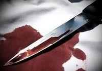 قاتل: دو روز جسد پسر و عروس ام را اره میکردم!