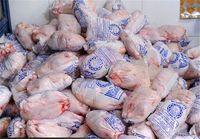 ۹۰ تن مرغ وارداتی امکان ترخیص ندارد