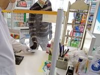 تب بازاری کرونا؛ از داروخانه تا فروشگاه