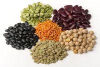 مصرف پروتئین گیاهی راهکار مبارزه با گرسنگی