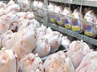 قیمت مرغ به ١١.۵هزار تومان کاهش یافت