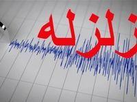 آمادهباش گروههای امدادی بوشهر در پی وقوع زمینلرزه +فیلم
