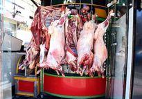 افزایش قیمت گوشت در مرکز پرورش دام