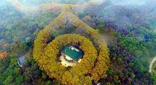 کاخی شبیه گردنبد زمرد در چین +تصاویر