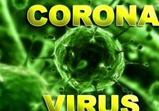 """فقط """"۵گرم ویروس کرونا"""" جهان را تعطیل کرد!"""
