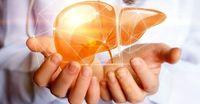 راههای درمان کبد چرب +عکس