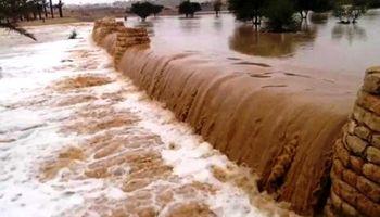 بزرگترین انارستان ایران زیر آب رفت