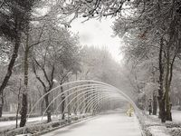 «برف» زمستانی بجنورد +عکس