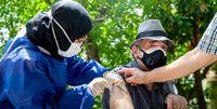زمان واکسیناسیون عمومی در پایتخت