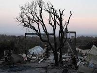 چند نفر در آتشسوزیهای کالیفرنیا کشته شدند؟