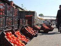 گوجهفرنگی ایرانی به قیمت ۱۴هزار تومان در پاکستان