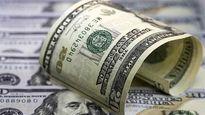 دلار تا ۱۴۰۶؛ پیش بینی سازمان برنامه محقق می شود؟