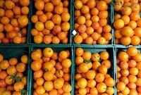 ۴ هزارتن؛ توزیع پرتقال برای تنظیم بازار شب عید