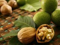 گنجاندن گردو در رژیم غذایی برای کاهش کلسترول