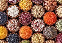 گرانیهای۹۷ چه غذاهایی را به سفره مردم آورد؟