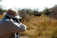 شکارچیان غیرمجاز با هوشیاری پلیس دستگیر شدند