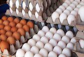 دلایل عدم استقبال مردم از تخممرغهای وارداتی/ تخممرغهای وارداتی ۲هفته در راه بازار ایران هستند