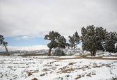 بارش برف در ارتفاعات خراسان شمالی +تصاویر