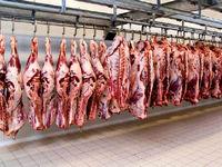 تامین گوشت هیئتهای مذهبی در محرم با قیمت تنظیم بازار