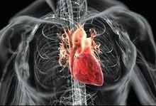 توصیههای غذایی برای قلب سالمتر