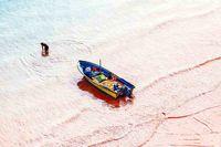 مرگ مرجانها درآبهای اسیدی خلیجفارس