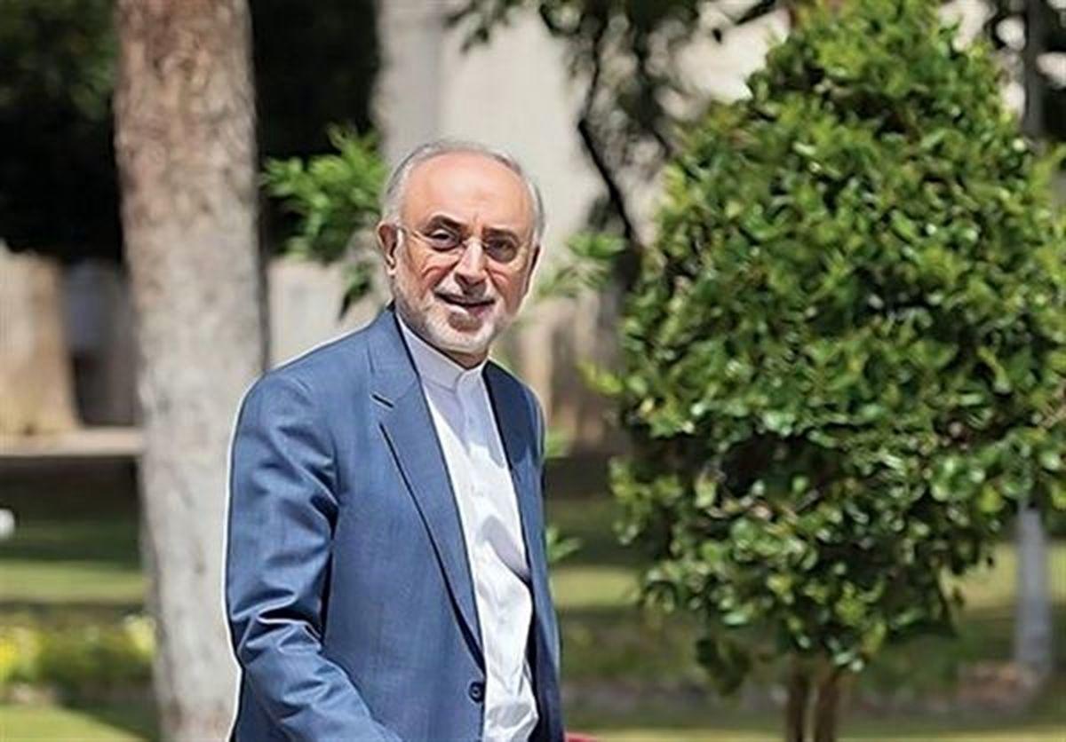 صالحی: در حال بررسی کاندیداتوری انتخابات هستم  / ترجیحم بر نیامدن است