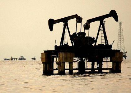 رشد ذخیره نفت آمریکا و نارضایتی ترامپ از بهای جهانی بنزین