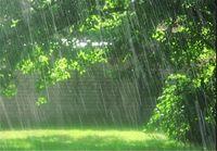 بارانی شدن بیشتر مناطق کشور در روز طبیعت