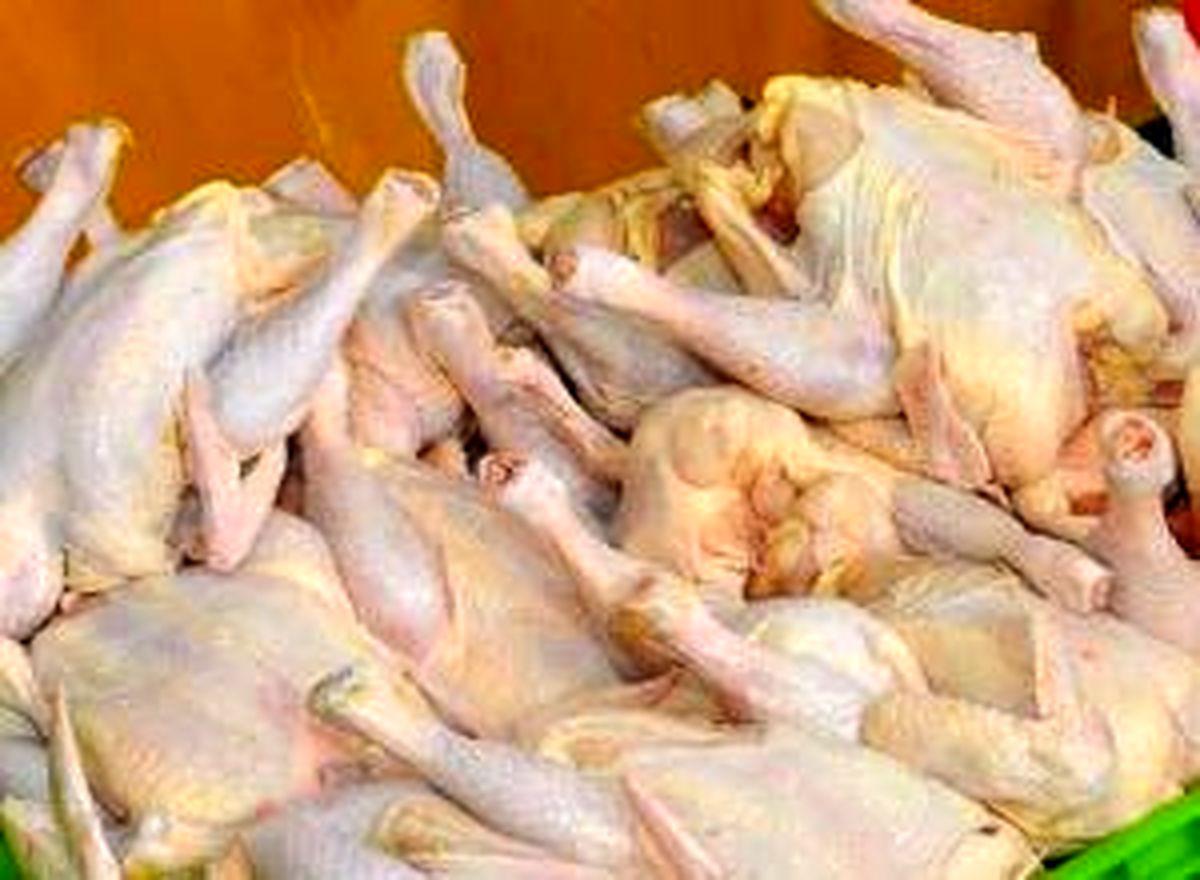 افزایش مجدد نرخ مرغ در بازار