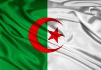 کاهش ۵۰درصدی بودجه دولت الجزایر به دلیل سقوط قیمت نفت