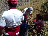 نجات خانواده گم شده در کوهستان +عکس