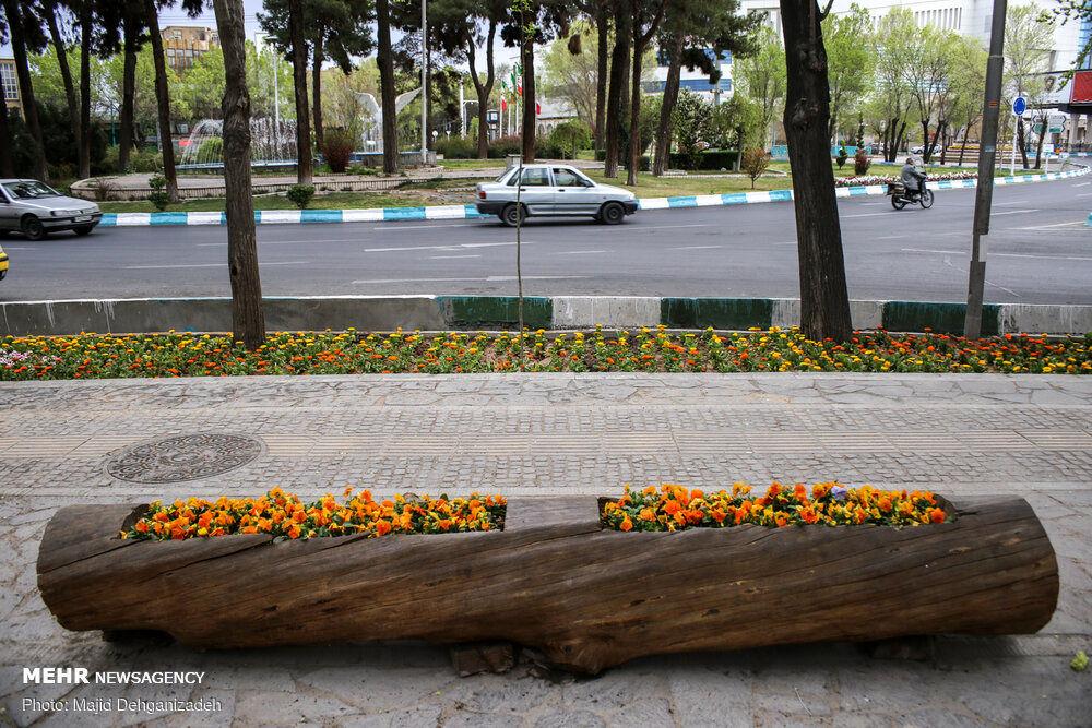 بهار یزد