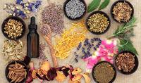 بخور نخورهای طب سنتی برای فصل بهار