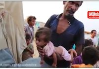 تصاویری که عربستان سعودی نمیخواهد جهان آن را ببیند! +فیلم