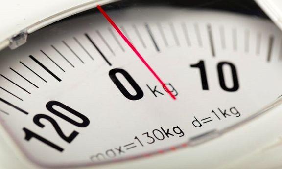 بهترین پروبیوتیکها برای کاهش وزن