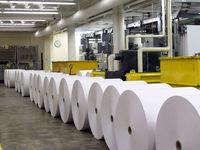 واردکنندگان کاغذ تو زرد از آب درآمدند