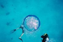 تصاویری حیرت انگیز از دریای کارائیب