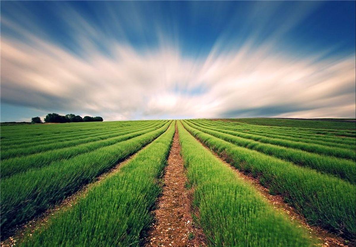 هشدار هواشناسی کشاورزی به کشاورزان برای ۵روز آینده