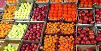 افزایش ۲۶درصدی صادرات محصولات کشاورزی