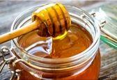 روز جهانی زنبور عسل برای نخستین بار در ایران