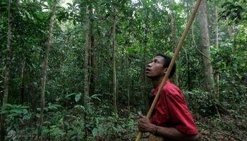 بیماری مرموز مرگبار در آخرین قبیله بومی مالزی +تصاویر