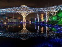 پل طبیعت از فردا بازگشایی میشود