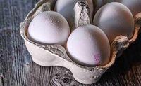عرضه تخم مرغ فلهای ممنوع شد