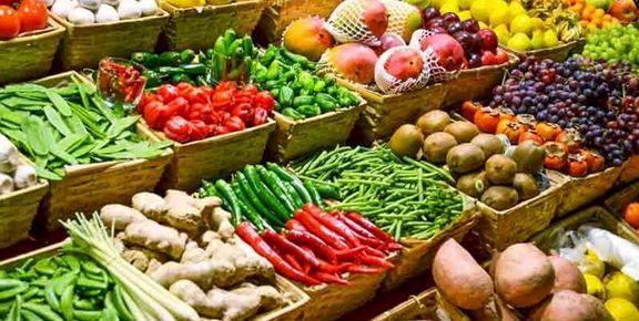 کاهش 10درصدی صادرات محصولات کشاورزی پس از شیوع کرونا