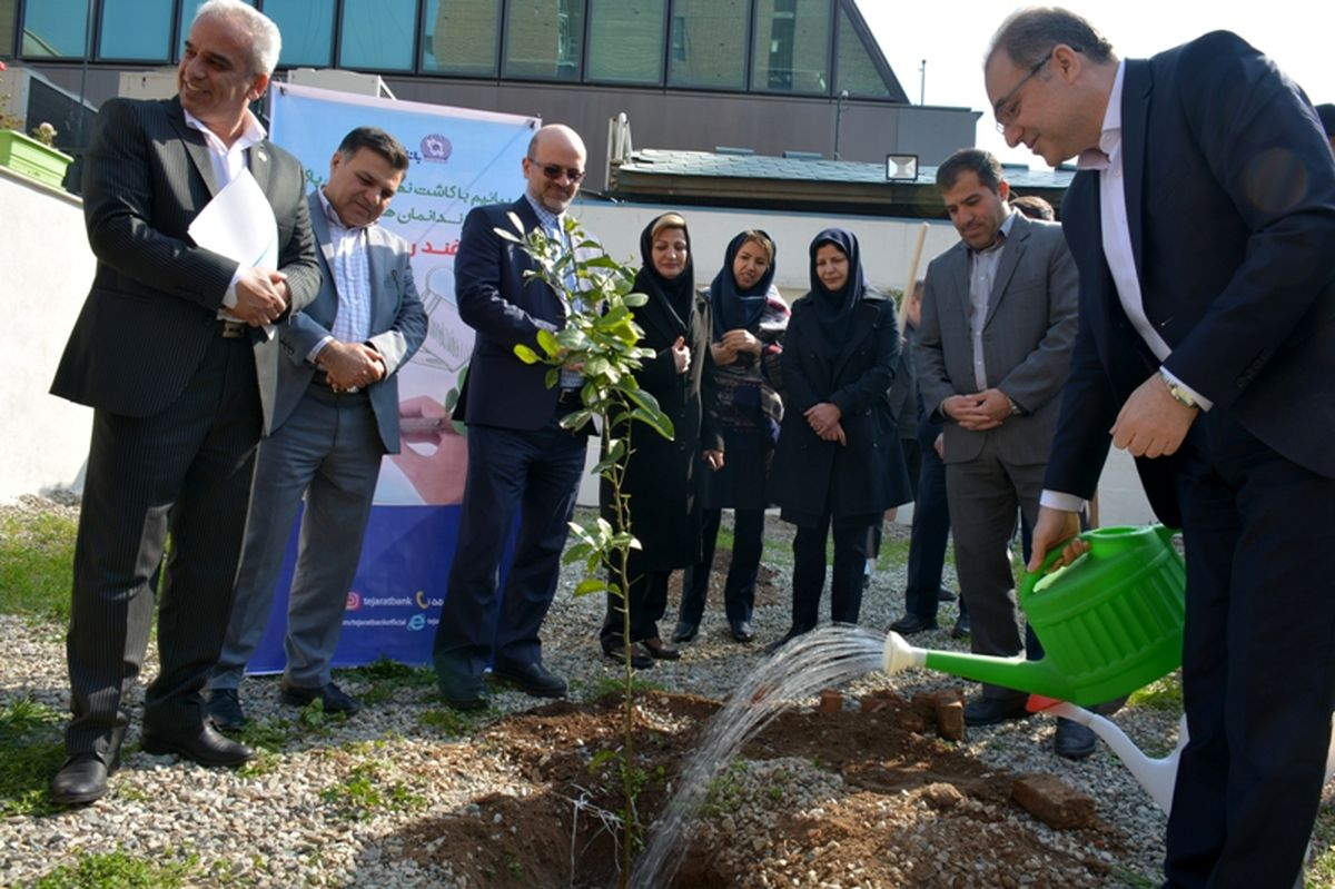 برگزاری مراسم درختکاری در بانک تجارت