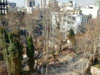 رصد دائمی باغات پایتخت